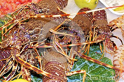 Lobster at the market