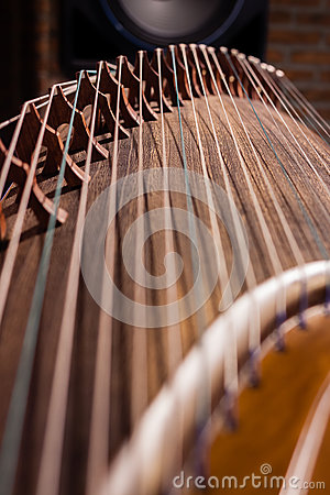Local details of  Guzheng