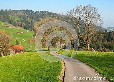 Local road in farm village Switzerland