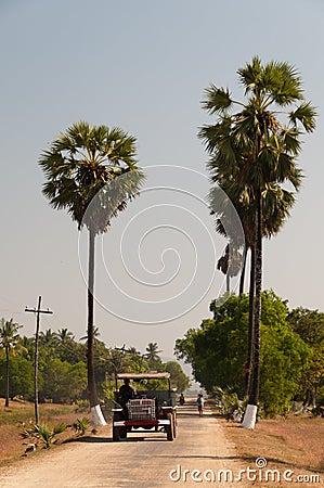 Local transport at Bilu Island, Myanmar