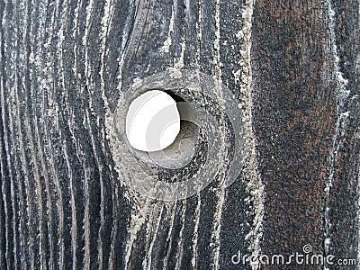 Loch im Holz