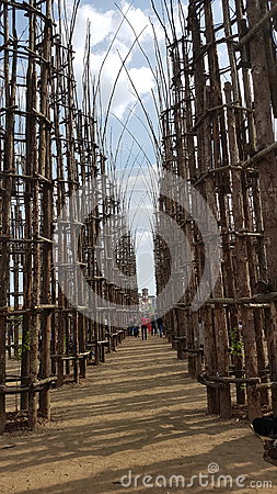Free Lodi, Giuliano Mauri`s Cattedrale Vegetale Stock Photo - 94447990