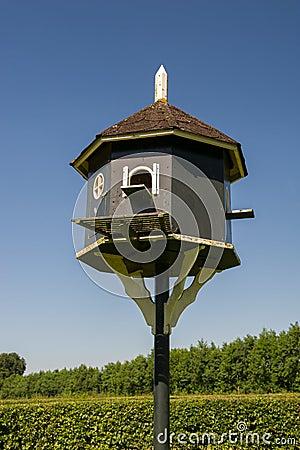 Loft for doves