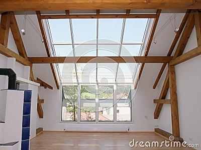 Loft Windows and Sky Lights