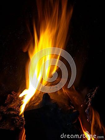 Log burning on fire at night