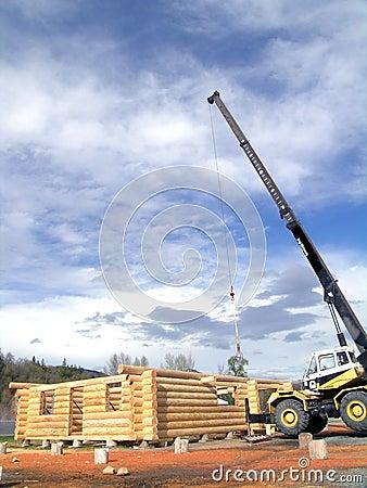 Log Cabin Crane