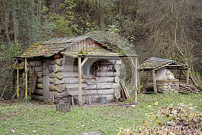 Log Cabin on the forest Woodland