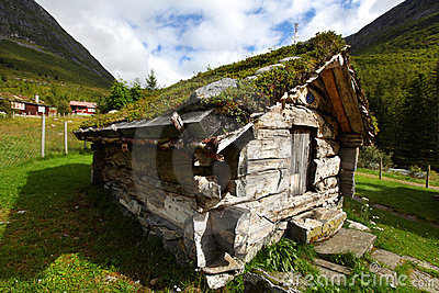 Log cabin with moss on the roof