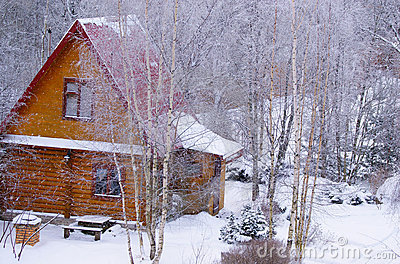 Log cabin in snowy forest