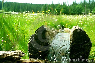 Log with fresh water Stock Photo