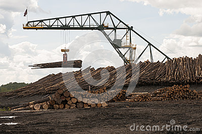 Log moving crane at lumber mill