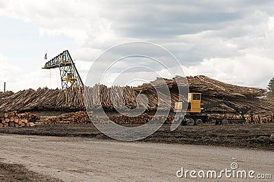 Log moving machines at lumber mill