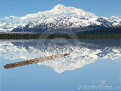 A Log in Peaceful Lake Beneath Mt. McKinley