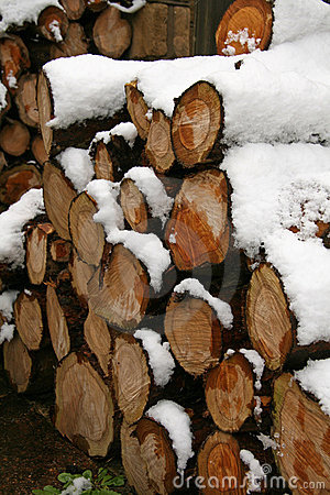 Log pile covered in snow