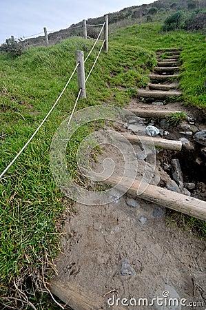 Log steps lead up a steep hill