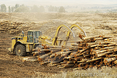 Logging Equipment 6