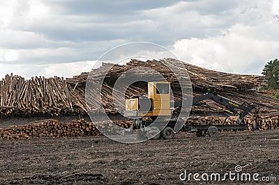 Logging equipment at lumber mill