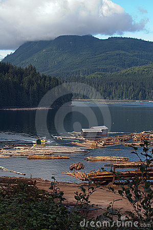 Free Logging Operation Royalty Free Stock Photography - 1596997
