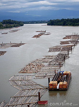 Free Logging Operation On Water Stock Images - 12503484