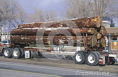 A logging truck Editorial Stock Photo