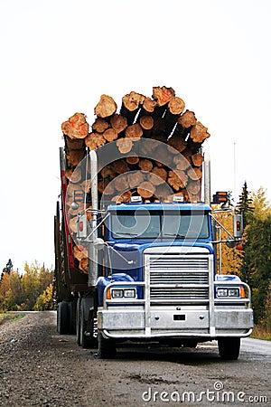 Free Logging Truck Royalty Free Stock Photos - 3377298