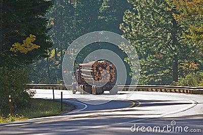Logging Truck full haul