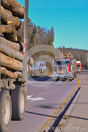 Logging Trucks on Highway