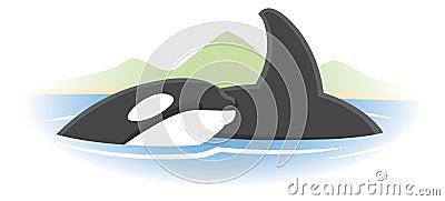 Logotipo de la ballena de la orca
