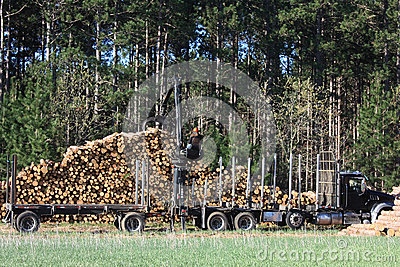 Logs Being Loaded for Transfer