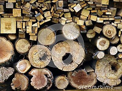 Logs cut