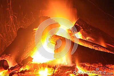 Logs in the Fire