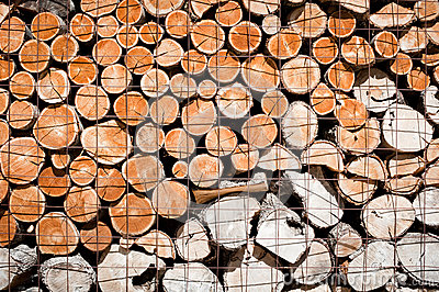Logs stacked and stored