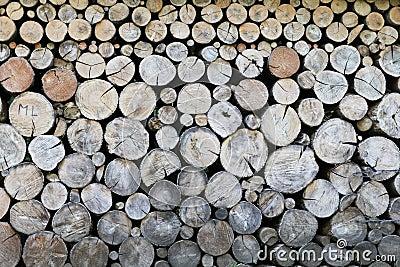 Logs of wood