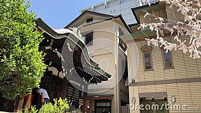 Lokalna świątynia w Kobe, Japonia zdjęcie wideo