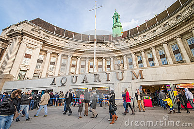 London Aquarium Editorial Photo