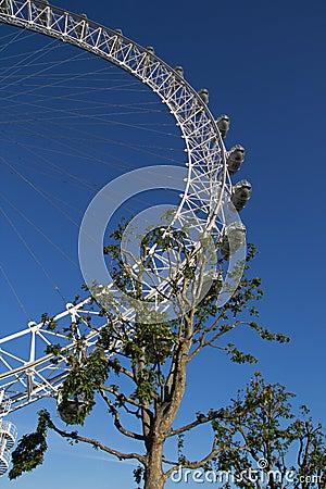 London Eye Editorial Image
