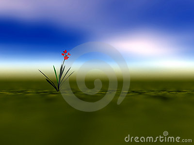 Lone Flower Illustration