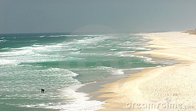 Lone surfer on a beach in Pensacola, Florida