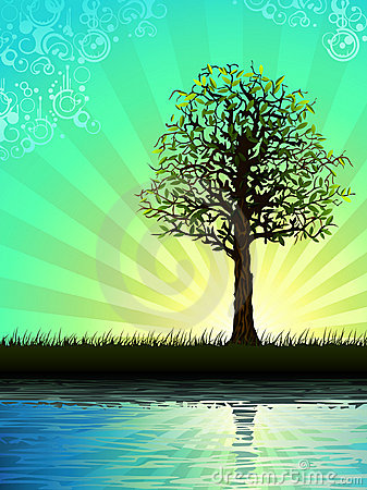 Free Lone Tree Reflecting In Water Royalty Free Stock Images - 7814899