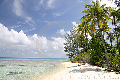 Lonely beach on Rangiroa island