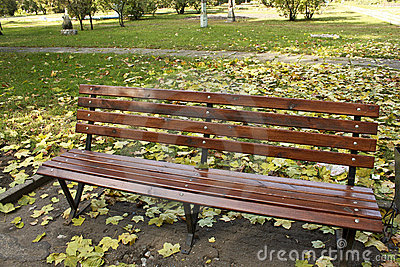 A lonely bench