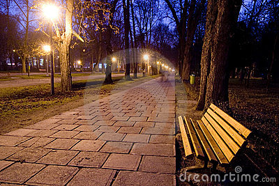 Lonely bench in park