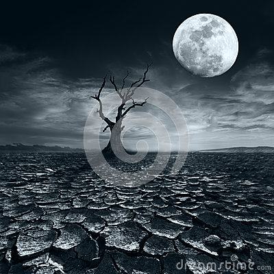 Free Lonely Dead Tree At Full Moon Night Under Dramatic Cloudy Sky Royalty Free Stock Photo - 41695355