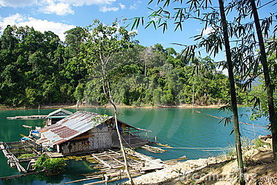 Lonely house in jungle - khao sok