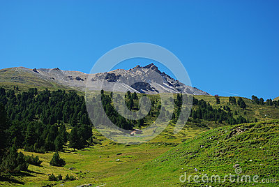 Lonely hut, forest and beautiful Swiss Alps
