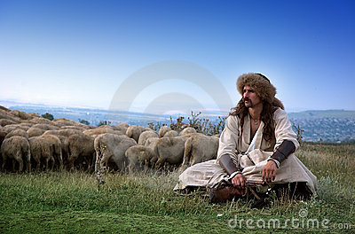 Lonely shepherd with sheep