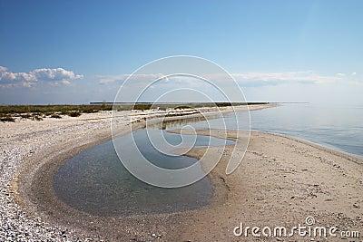 Lonely summer sea coast