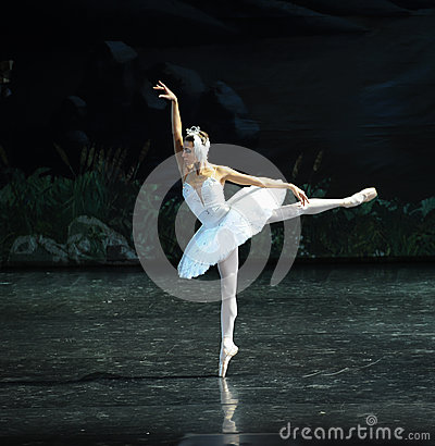 Free Lonely Swan-ballet Swan Lake Royalty Free Stock Photo - 48538325