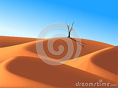 Lonely tree in desert dune