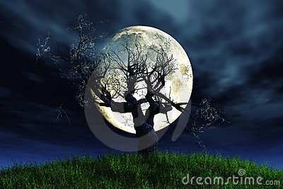 Lonely tree moonlight 3D render